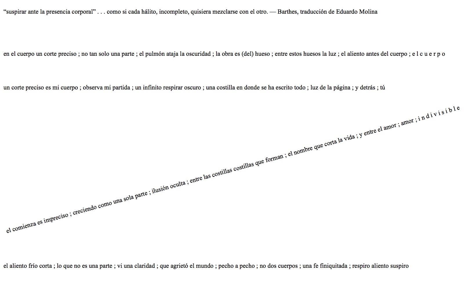 reed, gabriel antonio -- el nieuwe acá 2-- (espanol)